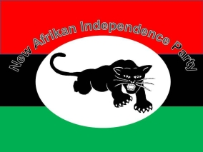 new-afrikan-independence-party-logo-2.jpg