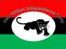 New Afrikan Independence Party Logo 2