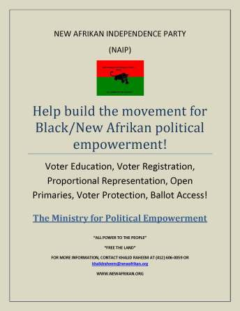 NAIP Political Empowerment poster