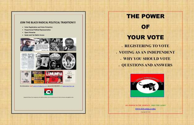 naipthe-power-of-your-vote_page_1